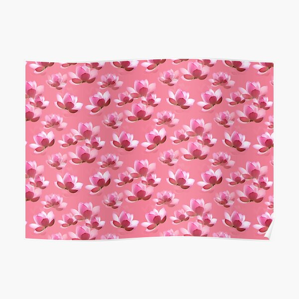 Pink White Flower Petals Poster