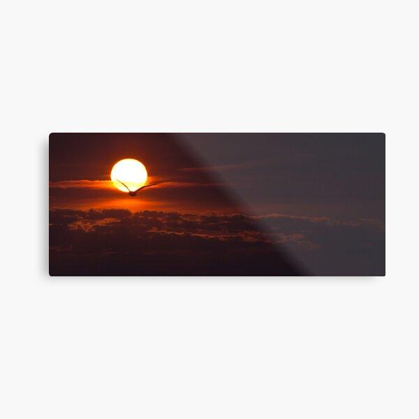 Lake Ontario sunrise  Metal Print