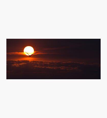 Lake Ontario sunrise  Photographic Print