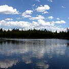 Dam Reflection by Valerie Henry