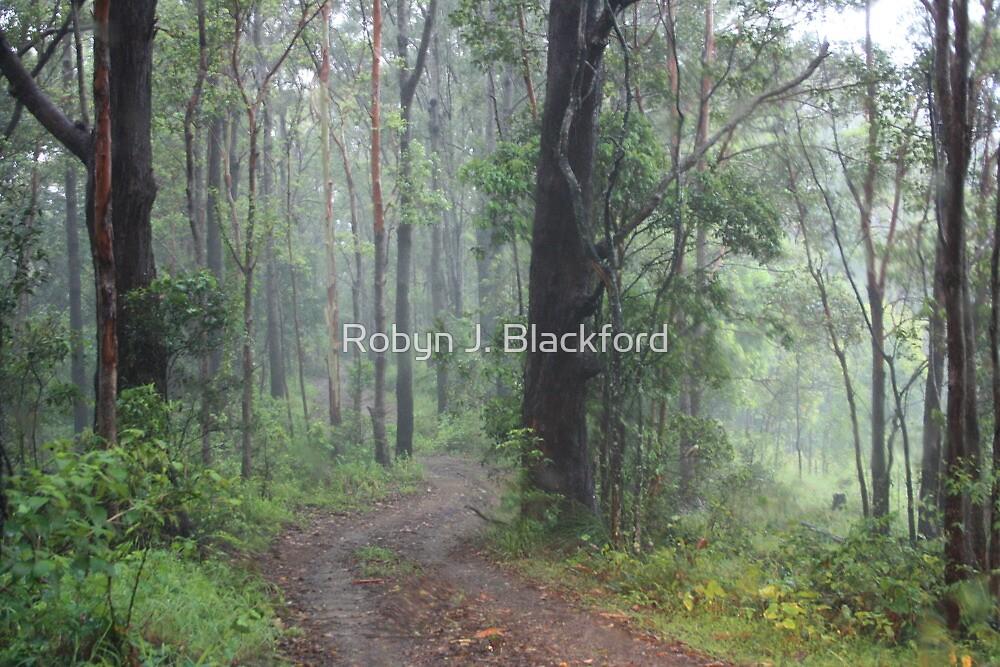 Fog in the Bush by aussiebushstick