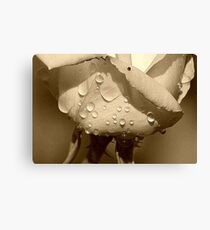 Sweat Canvas Print