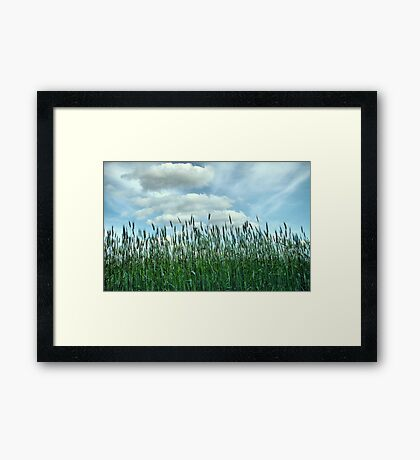 Looking to the Skies and See Framed Print