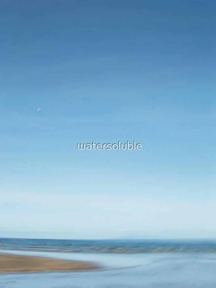 moonrise over browns bay by dennis william gaylor