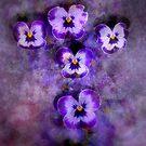 Hope by Lozzar Flowers & Art