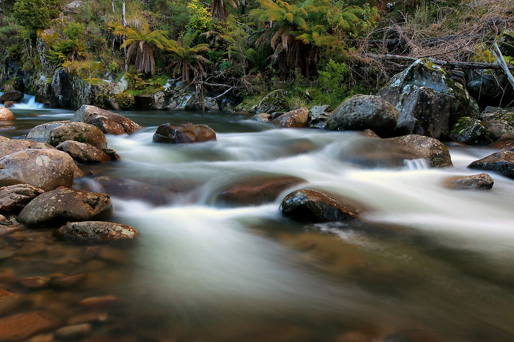 East Kiewa River by Cameron B