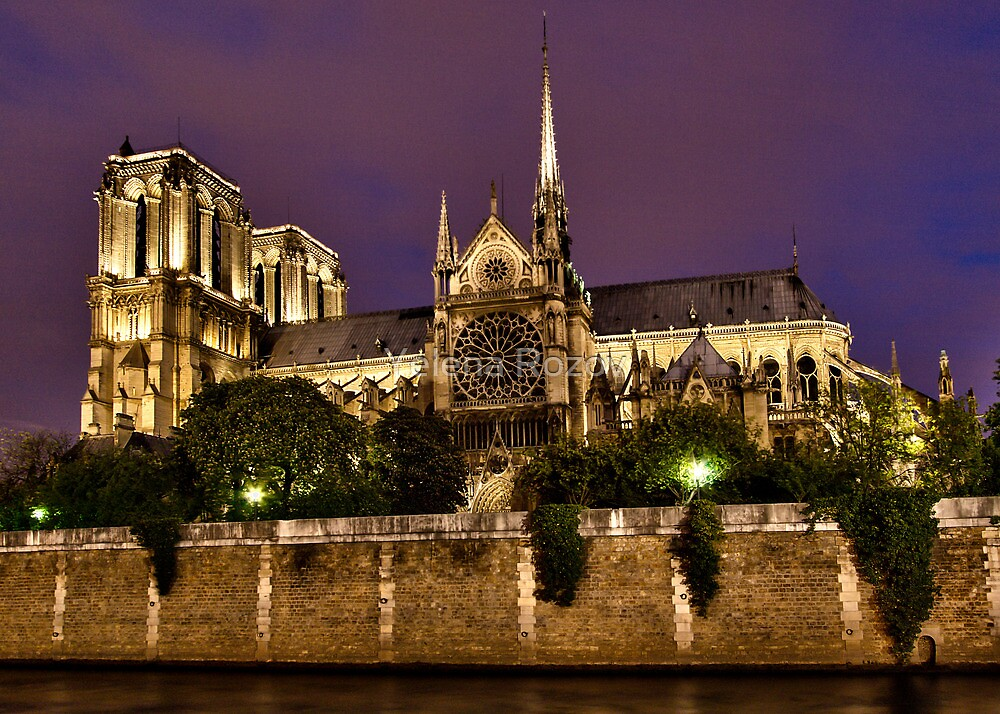 Notre Dame Cathedral. Paris, France by Yelena Rozov