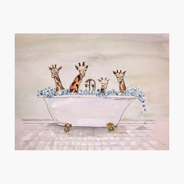 Giraffes in a Tub Photographic Print
