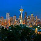 Seattle Skyline at Night (Washington) by Brendon Perkins