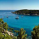 Fetovaia, Elba, Italy by Mark Howells-Mead