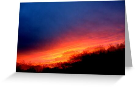 Sequential Sunset by Debbie Robbins