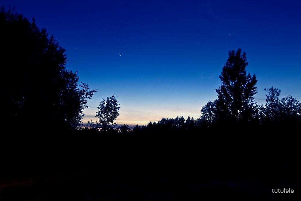 Sky. Night. by tutulele