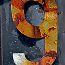Rusted 9 by Robert Goulet