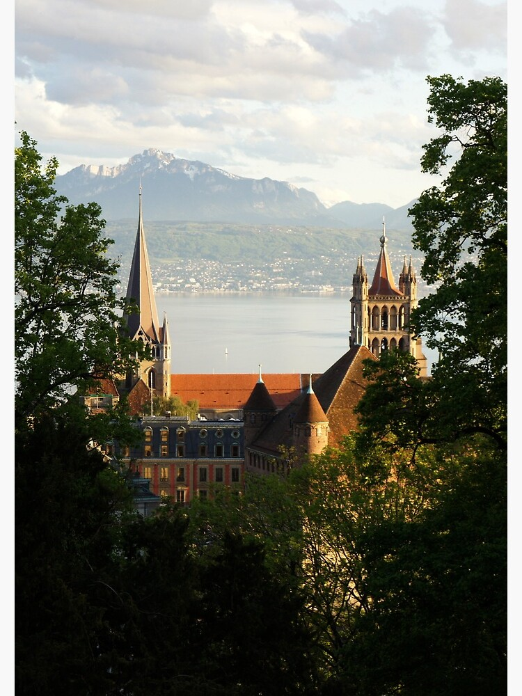 Lausanne Cathedral from Sauvabelin Tower, Lausanne, Switzerland by santoshputhran