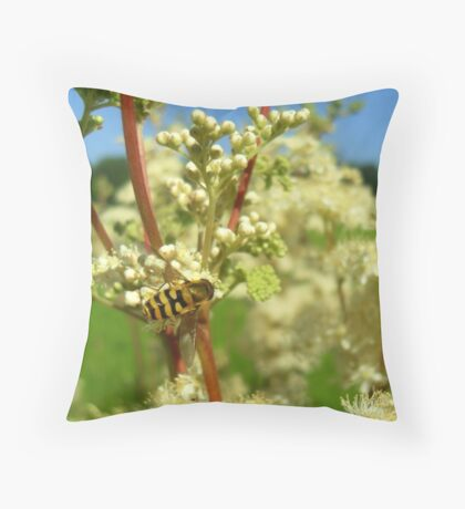 Just hovering  Throw Pillow