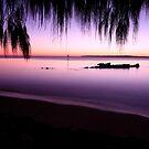 Moreton Bay Sunrise by Kym Howard