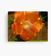 Sole Orange Canvas Print
