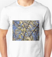 Willow catkins T-Shirt