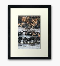 A site to behold  Framed Print