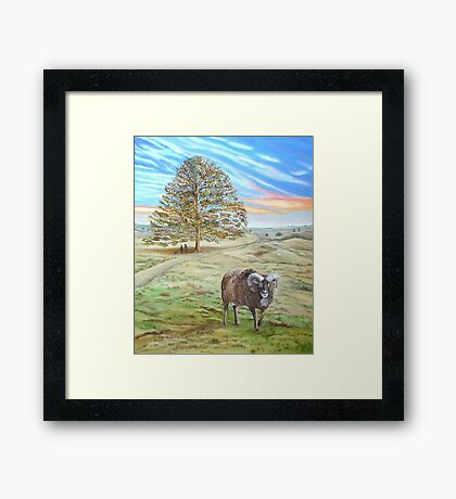 Aries Framed Print