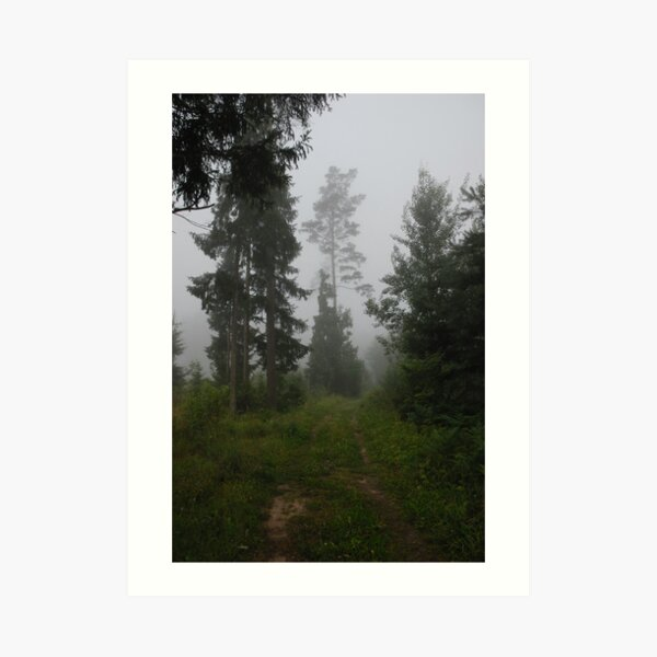 Forest pathway in fog Art Print