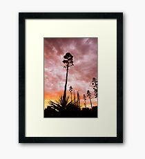 Agave Sunset Framed Print