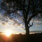 Here comes the sun by Rebecca White