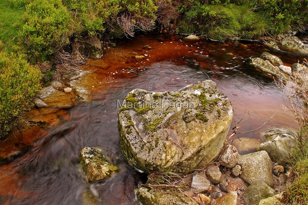 Wicklow Water by Martina Fagan