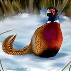 Pheasant by Shawn Swain