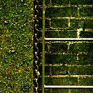 Below The Water Line by Damienne Bingham