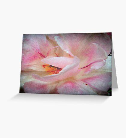 Wild Rose © Greeting Card