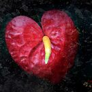 Love...a highly desirable malfunction of the heart by Astrid Ewing Photography