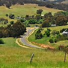Country Road by Geoff Beck