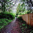 woodland walk by kirstyr03