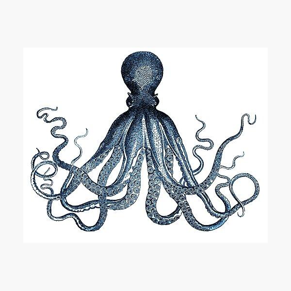 Vintage Octopus Art Print Blue ~ Kraken ~ Nautical ~ Retro ~ 0389 Photographic Print