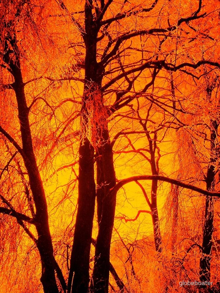 Fiery by globeboater