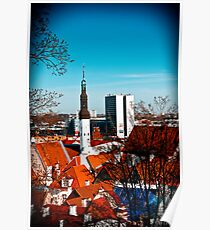View from Toompea. Poster