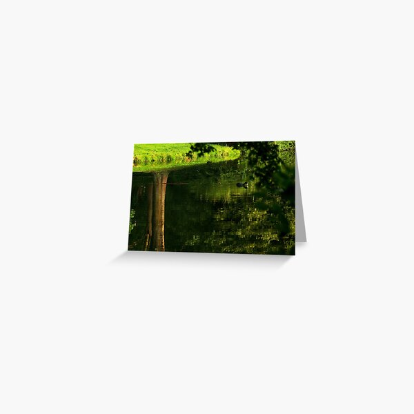 Coot's upside down water world Greeting Card