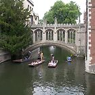 Synchronised Punting by Adamdabs