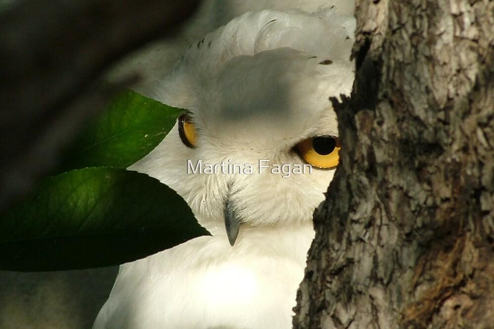 I can see you! by Martina Fagan