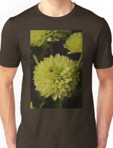Green Chrysanthanum Closeup Unisex T-Shirt