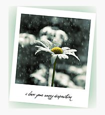 i love your sunny disposition Photographic Print