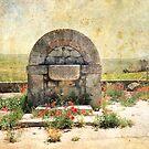 Fontana Antica by Rosy Kueng Photography