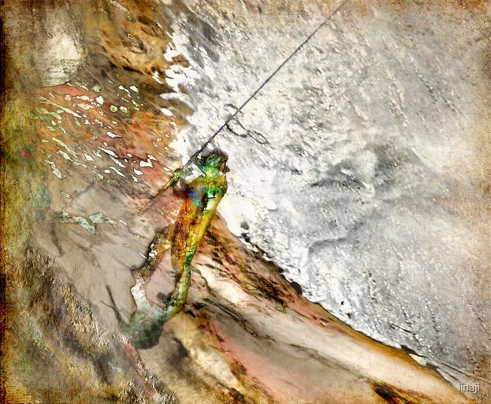 Fisherwoman 2 by linaji
