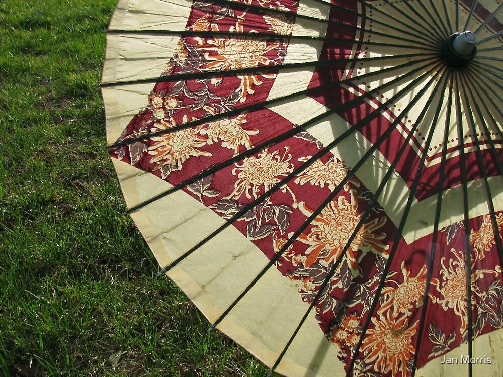 Japanese Umbrella by Jan Morris