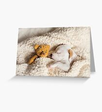 Daisy & Patches Greeting Card