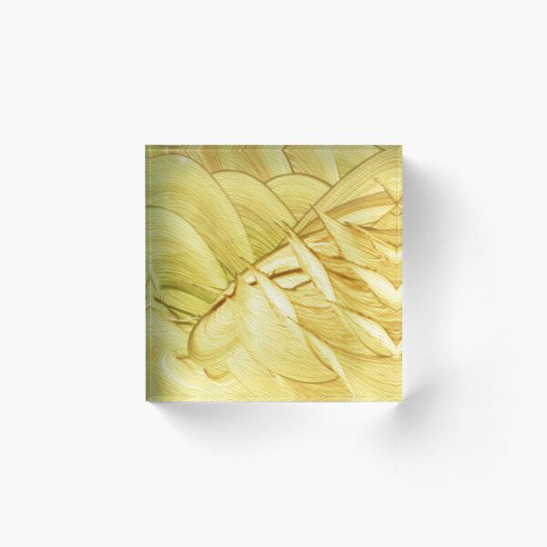 Ninigalla Acrylic Block
