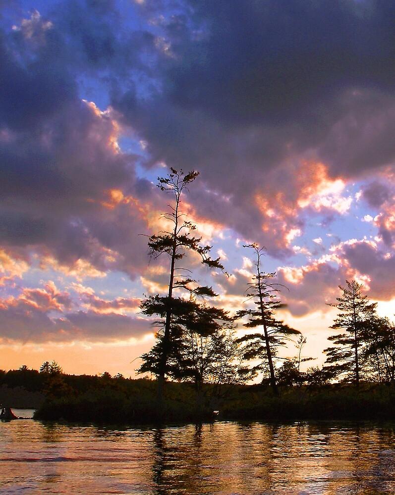 Twilight by Lynda Lehmann