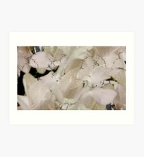 Layers and Layers of Little White Flowers Art Print