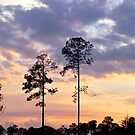 St. Augustine Sunset by Caren